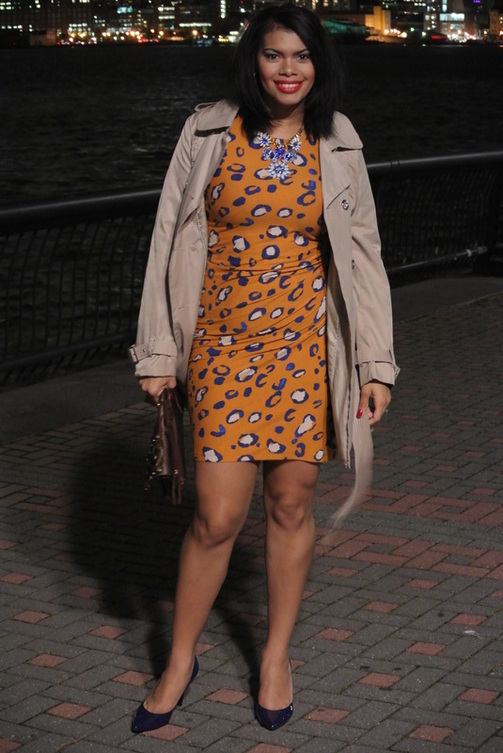 Alicia Gibbs 29th Birthday: Philip Lim for Target Animal Print Dress